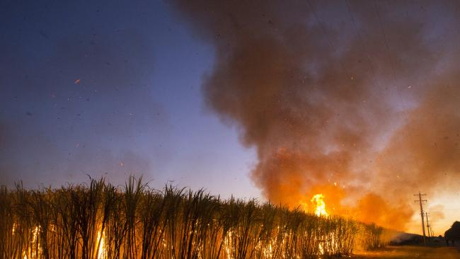 Blaze threatens sugarcane fields, vehicles in Granville