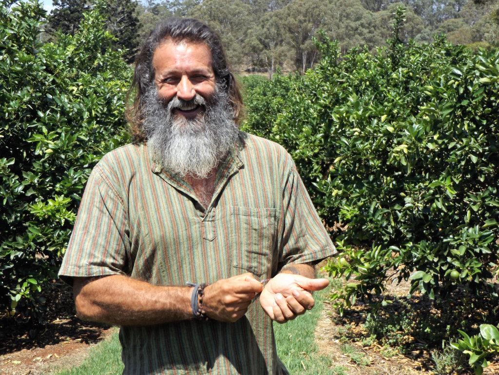 Tarzan is a lime farmer by trade.