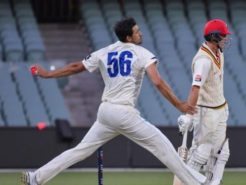 Mitchell Starc was back to his best with a devastating performance against South Australia.