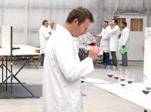 Wine judges test 1100 drops