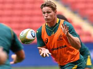 Wallabies eyeing a perfect trip north