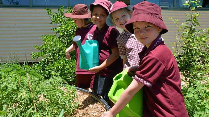 GREEN THUMBS: Harry Pye, Allison Baldwin, Aayushi Pandey and Jessica Riddle working in Taabinga State School's vegie patch.