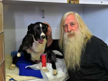 Phil Dahlenburg and his dog Gemma, a nine-year-old border collie, which was savagely attacked by a wild dog.