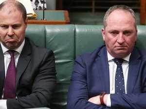 Citizenship saga engulfs Malcolm Turnbull's energy minister