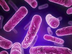 Dangerous bacteria found at hospital