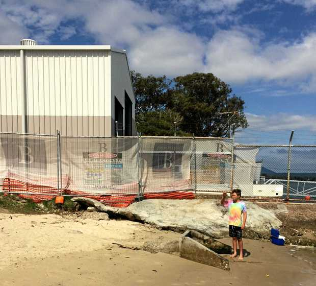 OVER THE TOP: Noosa MP Glen Elmes is upset by the emergence of this giant