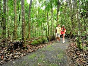 Coast's green-belt study could be a win for tourism