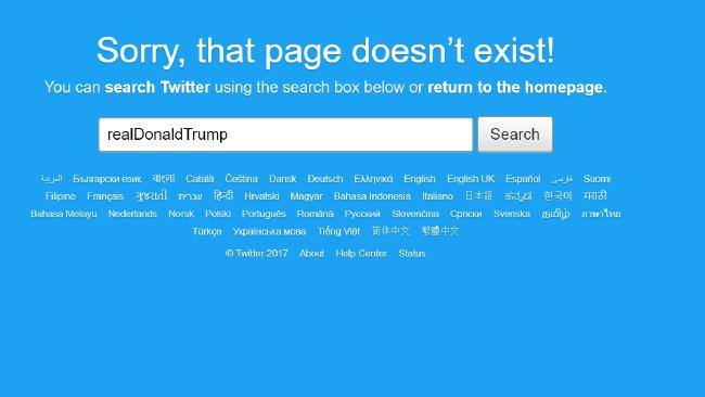 Donald Trump's Twitter account disappeared briefly.