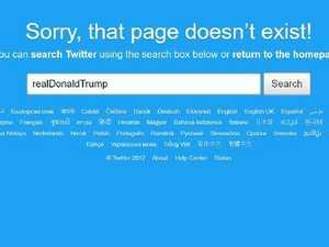 Donald Trump's Twitter disappears, critics rejoice