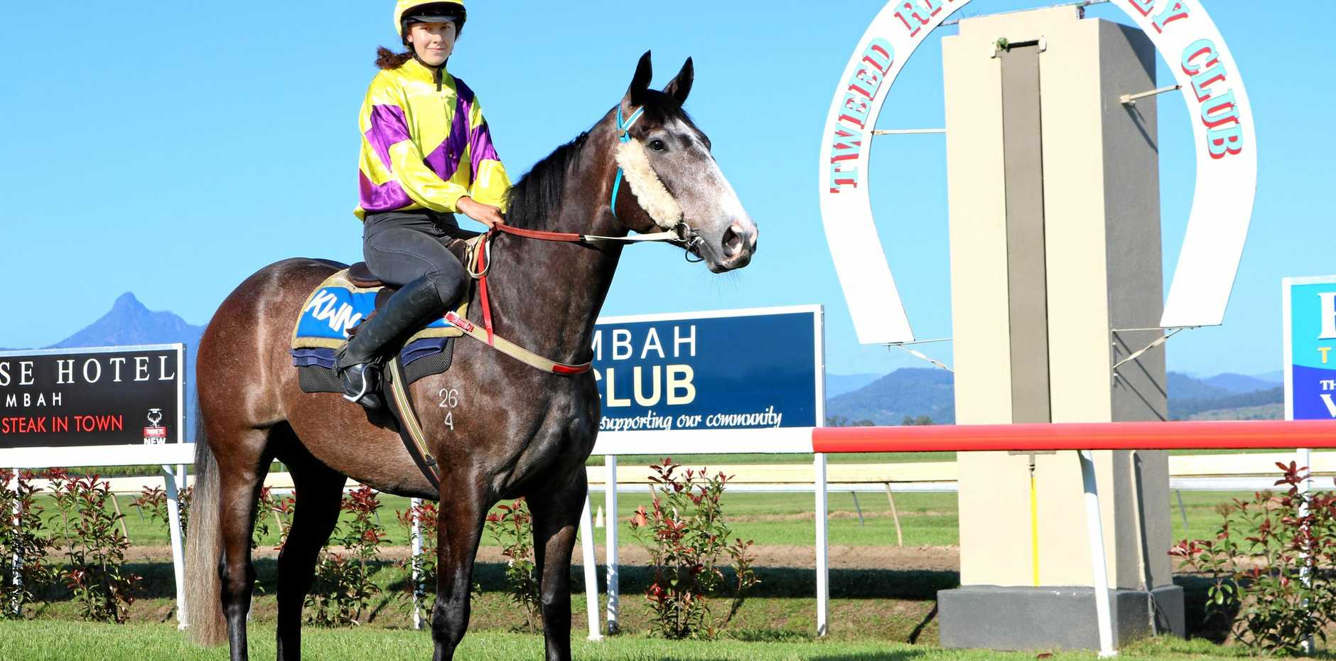 Murwillumbah track worker Courtney Moorhouse works unraced three-year-old Look Out Boy ahead of Tuesday's races.