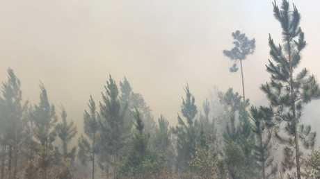 BLAZE: Flames at corner of Irwin Rd and the block near Australia Zoo.