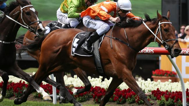 Blake Shinn rides Who Shot Thebarman to victory in the Moonee Valley Gold Cup. Picture: AAP