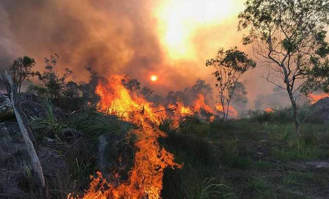 Backburning is conducted at Beerwah to manage a fire that burned near Australia Zoo.