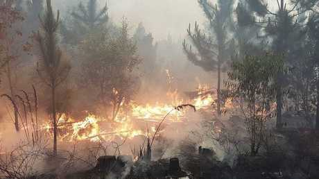 About 30 fire crews worked to contain a bushfire that burned at Landsborough and Beerwah.
