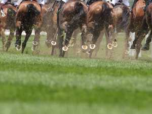 Scamwatch: Avoid a rough Melbourne Cup ride