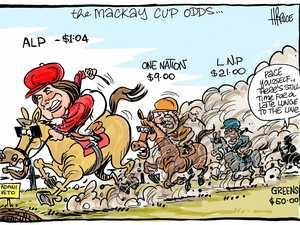 Election odds amid new calls to 'make Mackay marginal'