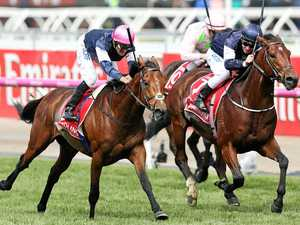 Millionaire dreams dashed after Melbourne Cup loss
