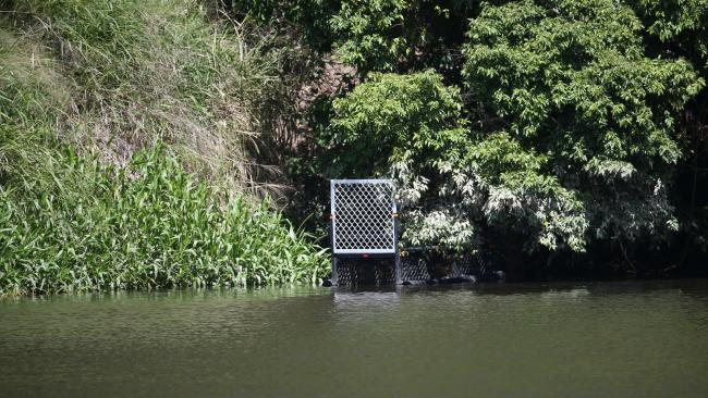 A Crocodile trap has been placed at Lake Placid after a sighting. PICTURE: STEWART McLEAN