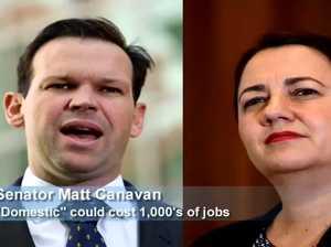 Canavan: 'Domestic' could cost 1000s of jobs