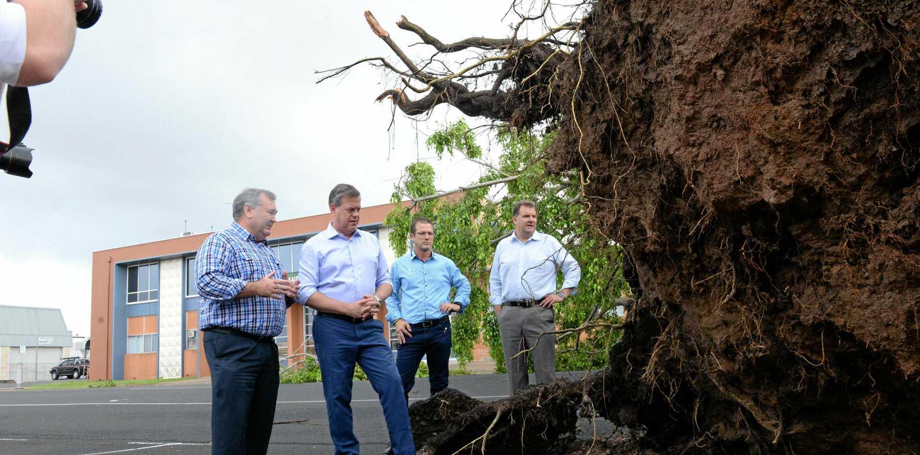 ON TOUR: Opposition Leader Tim Nichols, Mayor Jack Dempsey, candidate David Batt and Burnett MP Stephen Bennett survey the fallen tree outside Centrelink on Woongarra St.