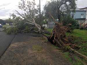 Tips open longer to cater for storm clean-up