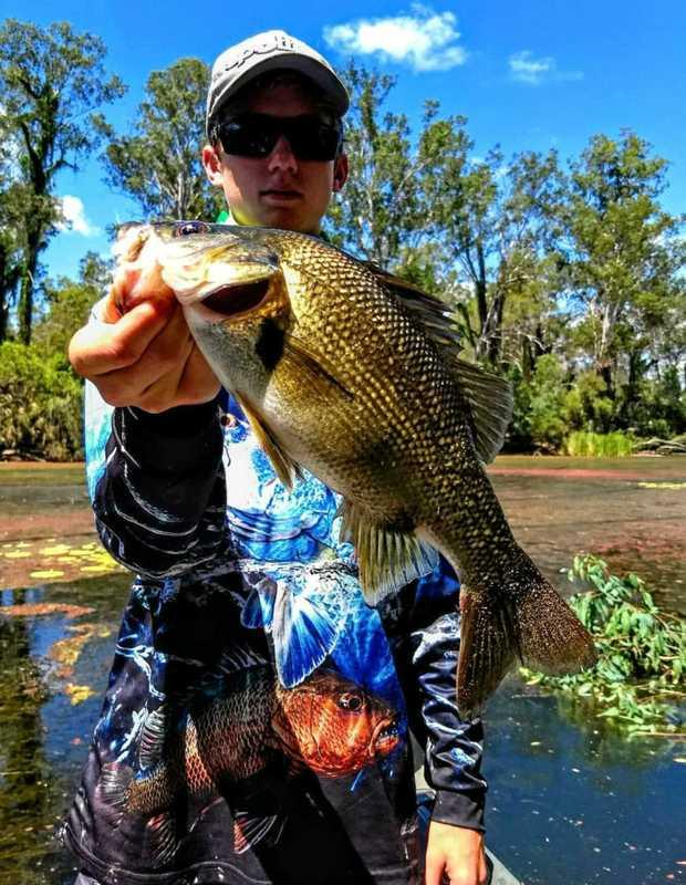 BASS FIRING: Corey Hanks with a quality Australian bass he caught earlier this week.