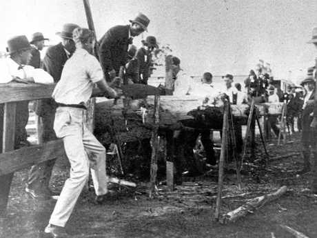 Landsborough Cross Cut Saw fund raising competition during World War I, ca 1915.