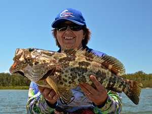 FISHING REPORT: Gutters provide fine catches