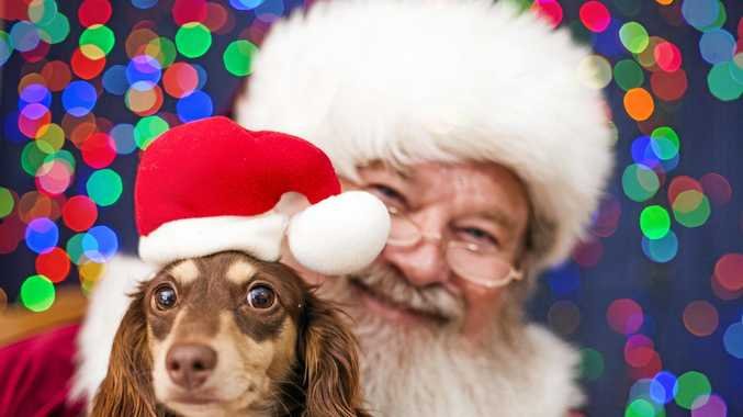 THE big man in the red suit will be stopping in at the RSPCA this weekend to meet with all the good dogs from the region.