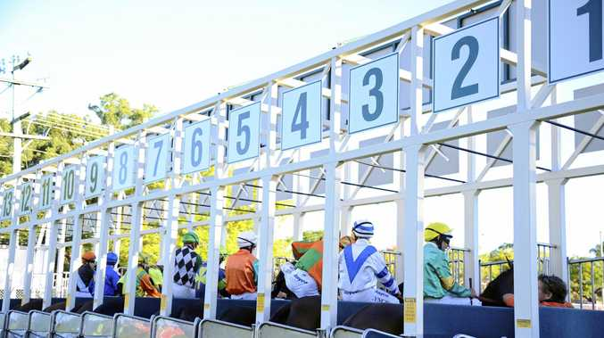Jockeys and horses in the barriers and ready to go at the start of Race 7 at the Clarence River Jockey Club. Photo JoJo Newby / The Daily Examiner