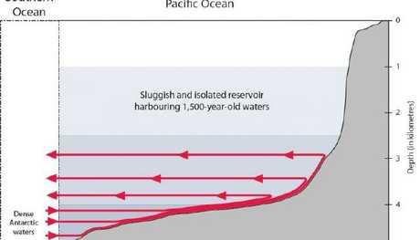 Schematic illustration of water currents. Credit: Fabien Roquet and Casimir de Lavergne