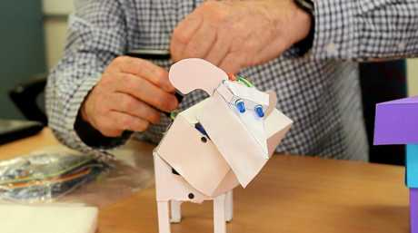 Students in Quilpie built this robotic dog over video conferencing with a Toowoomba lecturer.