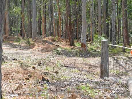 A man died instantly when he fell into a wood chipper on a private property at Goomboorian on Sunday evening.