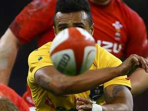 Refocused Genia loving life back in big time