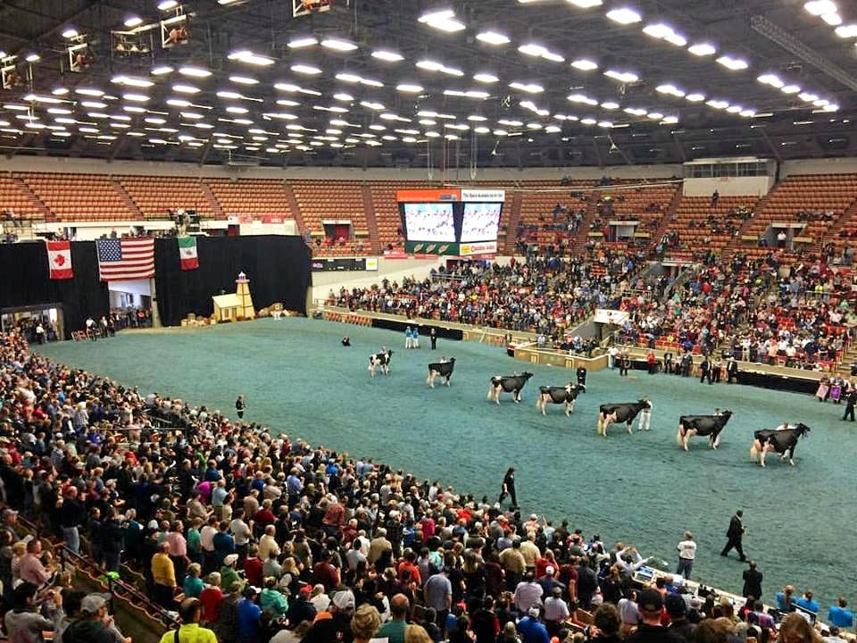 The World Dairy Expo in Wisconsin was the last stop on the trip for Kieran Bourke, a gathering of 70,000 people from countries around the world.