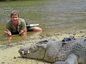 WATCH: 'You bit me on the nose!' 5 classic Steve Irwin moments