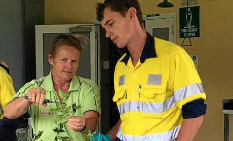 CQU lead horticulture teacher Julie Barry teaching GEA trainee Scott Gibbs how to propagate Australian natives.