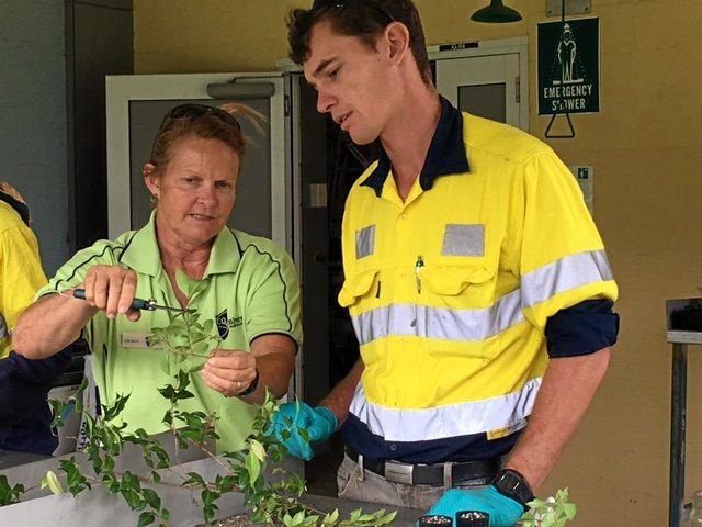 CQU lead horticulture teacher Julie Barry teaching GEA trainee Scott Gibbs how to propagate Australian natives.