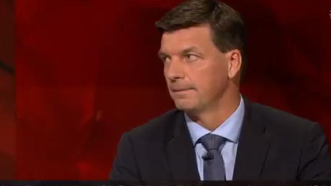 Liberal member Angus Taylor says there's no 'quick fix' to the citizenship scandal.