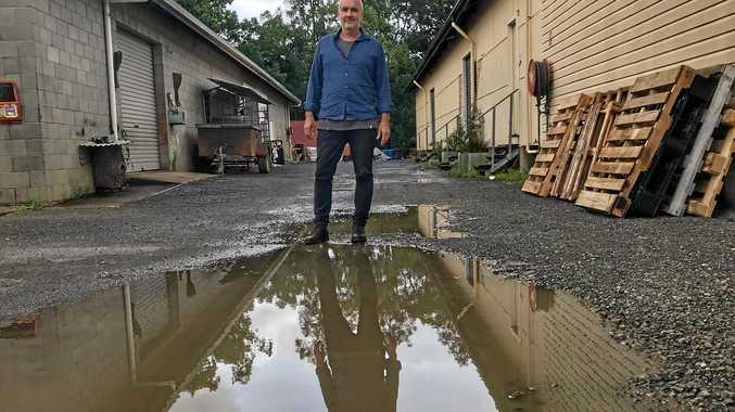 REFLECTING ON TEN YEARS: Glenn Wright, Director of Mullumbimby Music Festival.