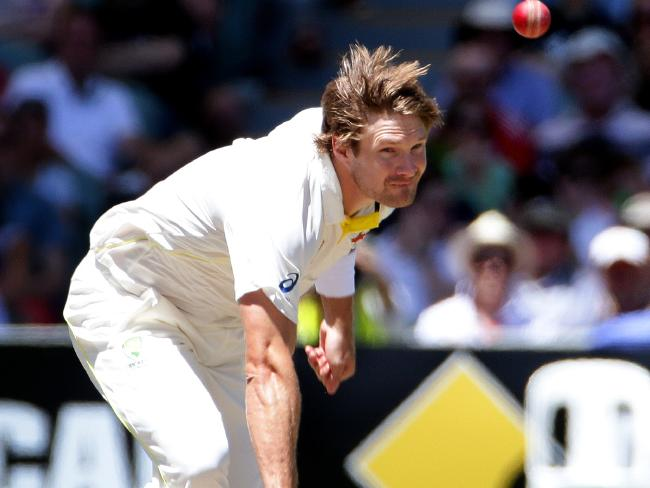 Shane Watson played an important role with the ball in 2013-14.