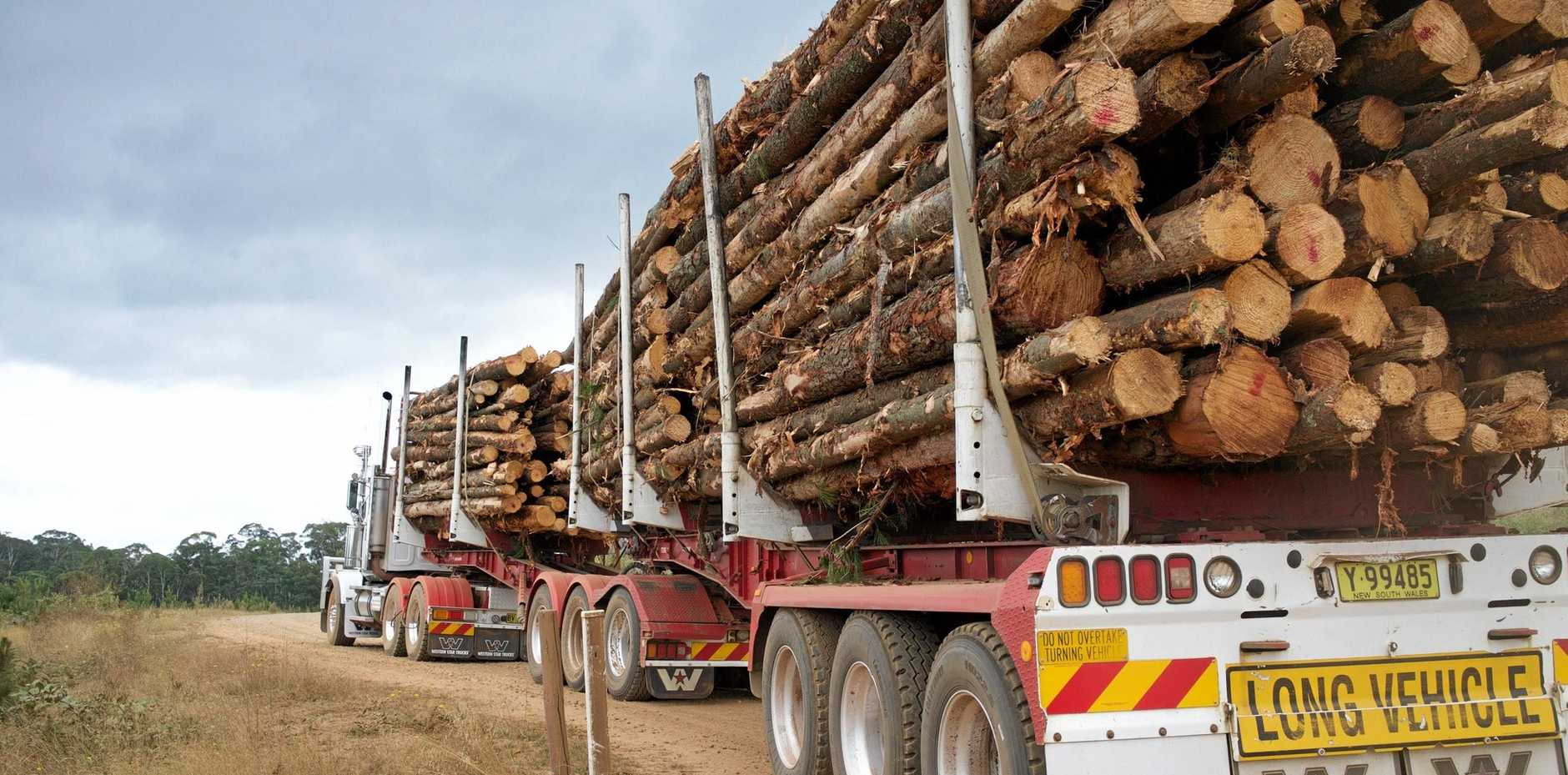 A major boost to the Maryborough timber industry has been proposed.