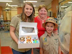 Tiger cupcakes prove a wildlife winner for Monique