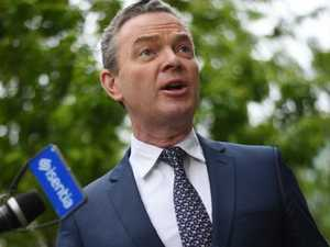 Pyne's gay porn like Twitter hack probe dropped