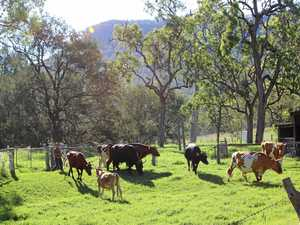 Farmers urge politicians to protect agricultural land
