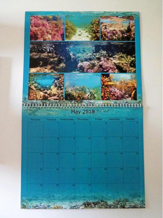 The Minnie Water underwater calendar.