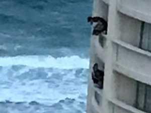 Schoolies balcony fools evicted