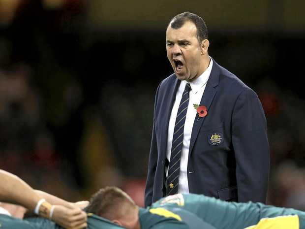 Wallaby coach Michael Cheika's outburst is being investigated