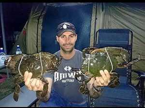 Get crabbin' in wet weather in Mackay