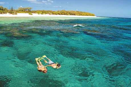 The Fraser Coast's Lady Elliot Island Eco Resort got the silver medal in The Steve Irwin Award for Ecotourism at the 2013 Queensland tourism awards. Contributed.